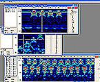 ソフトウェアイメージ写真